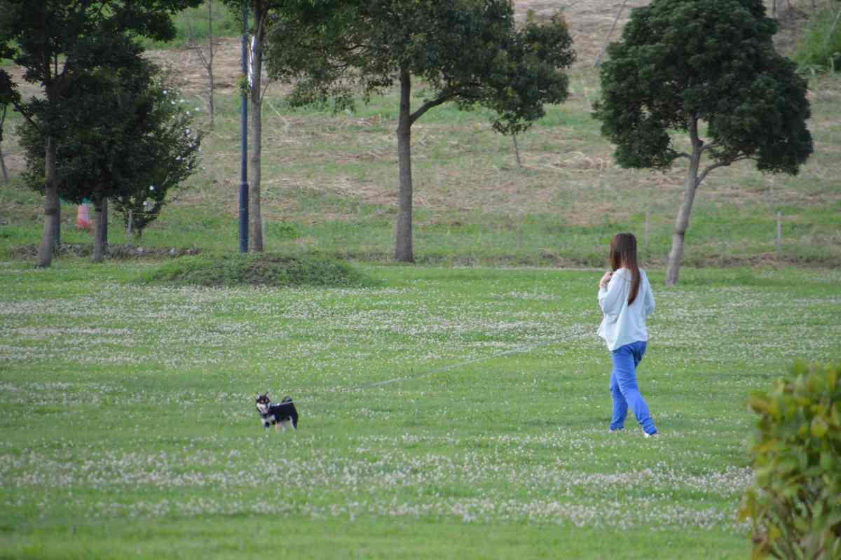 ひめと歩いてお散歩しているママ